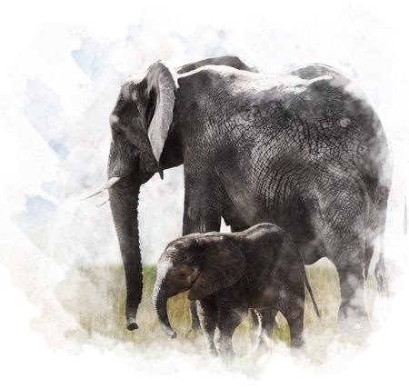 Watercolor Digital Painting Of Elephants  Stockfoto