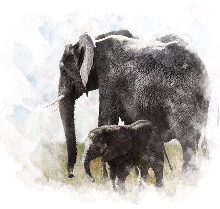 Watercolor Digital Painting Of Elephants  Archivio Fotografico