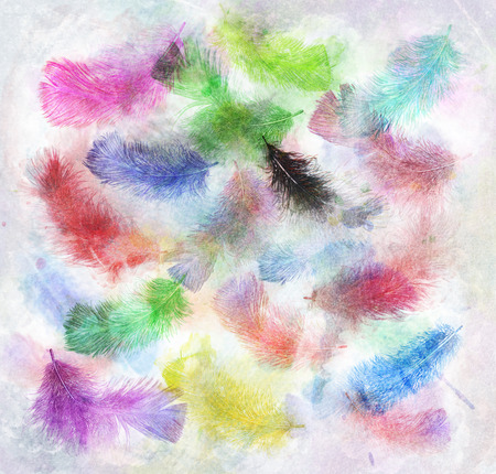 digital art: Watercolor Digital Painting Of  Colorful Feathers Stock Photo