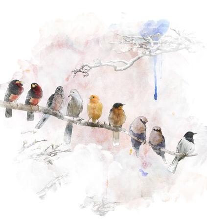 Watercolor Digital Painting Of   Perching Birds