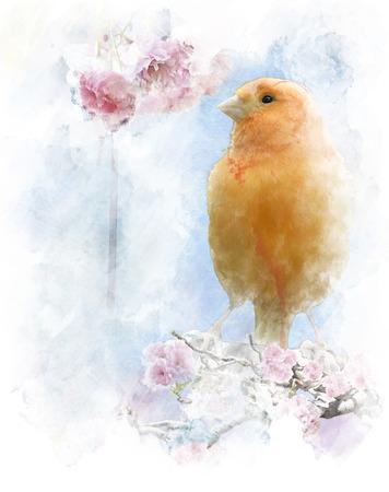 Watercolor Digital Painting Of   Yellow Bird Perching