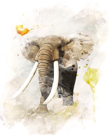 arte africano: Pintura de la acuarela digital de caminar del elefante Foto de archivo
