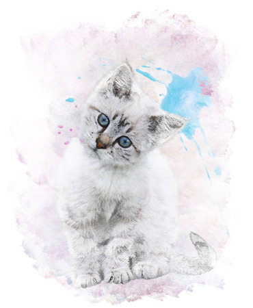 Watercolor Digital Painting Of  White Kitten