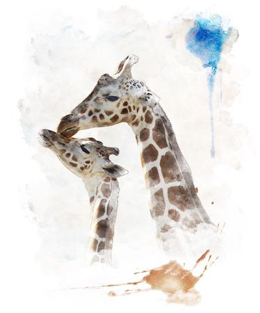 Aquarelle numérique de la mère et de bébé Girafes Banque d'images - 30794360