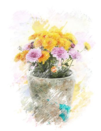 Watercolor Digital Painting Of   Autumn Chrysanthemums