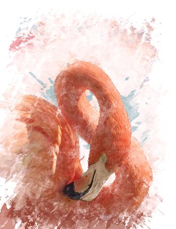 Watercolor Digital Painting Of  Pink Flamingo Bird 写真素材