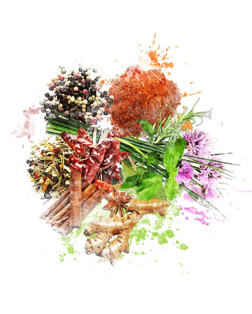 Watercolor Digital Painting Of  Spices And Herbs Zdjęcie Seryjne