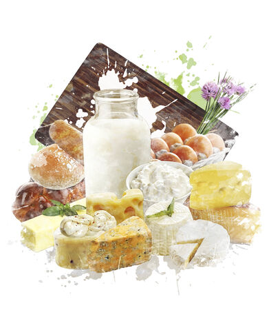 arrangment: Watercolor Digital Painting Of Dairy Products Stock Photo