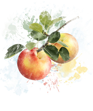 Watercolor Digital Painting Of Red And Yellow Apples Stok Fotoğraf