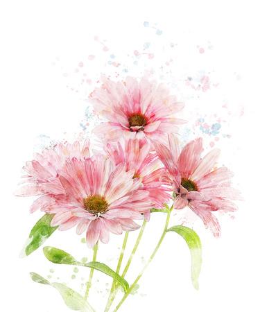 Watercolor Digital Painting Of Chrysanthemum