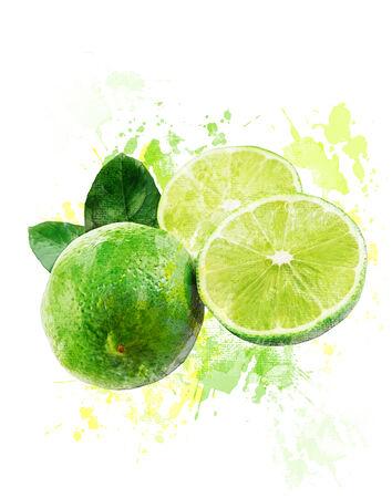 Watercolor Digital Painting Of  Fresh Juicy Limes