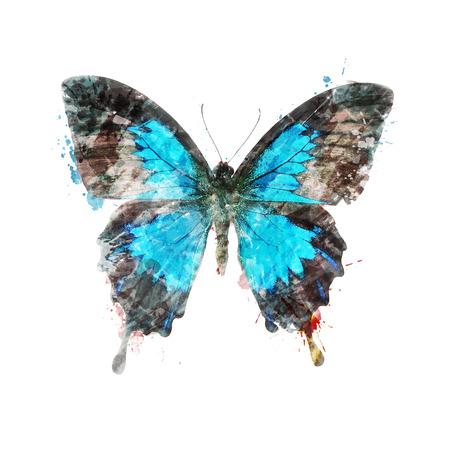 mariposa azul: Pintura Acuarela Digital De Mariposa Tropical