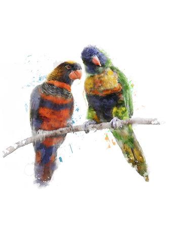 watercolour: Watercolor Digital Painting Of Rainbow Parrots(Rainbow Lorikeet)