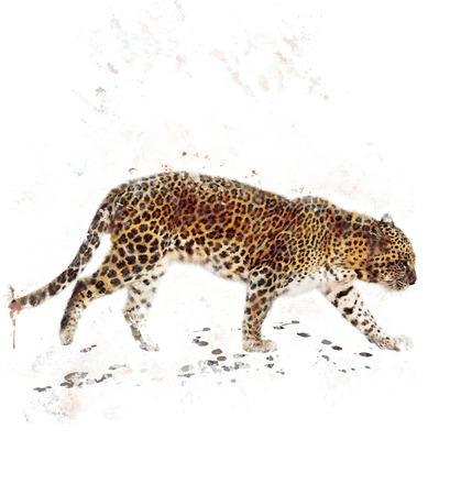 Watercolor Digital Painting Of  Walking Leopard Stok Fotoğraf