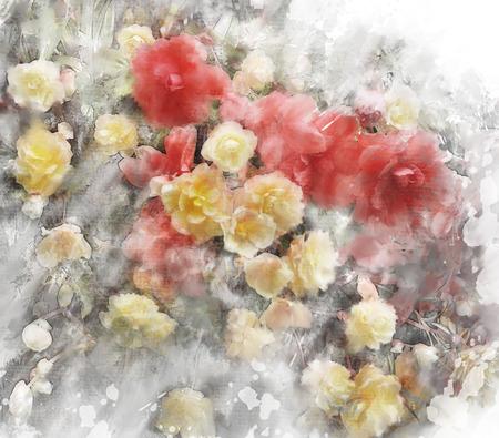 begonia: Watercolor Digital Painting Of  Begonia Flowers Stock Photo