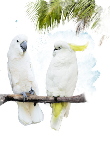 Digital Painting Of White Parrots