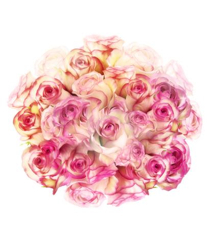 Digitale Schilderij Van Roze Bloemen Op Witte Achtergrond