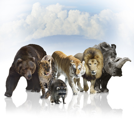 mammals: Digital Painting Of Wild Mammals Against A Blue Sky Stock Photo