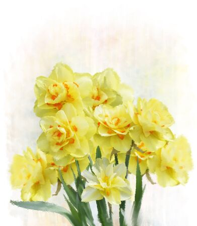 daffodil: Digital Painting Of Yellow Daffodil Flowers Stock Photo