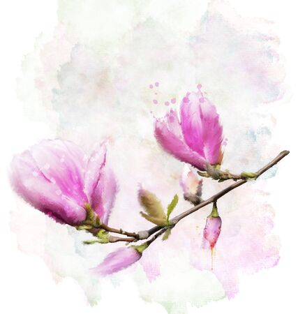 Digital Painting Of Magnolia Flowers
