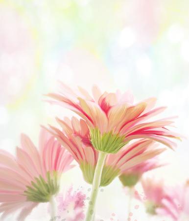 Digital Painting Of  Gerbera Flowers Stock Photo