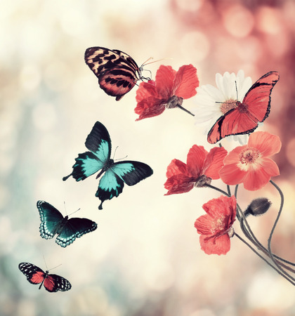 Digital Painting Of Flowers And Butterflies Stock Photo