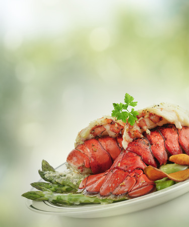 lobster dinner: Grilled Lobster Tail  With Asparagus