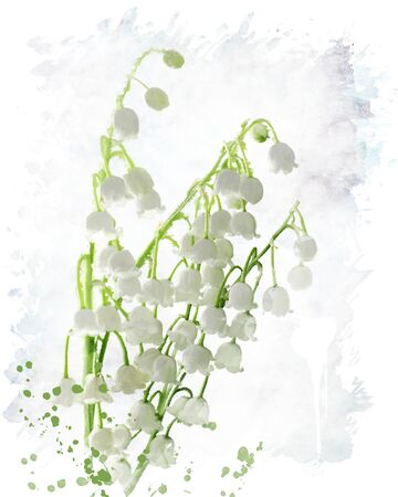 lily of the valley: Digital Painting Of Lily Of The Valley