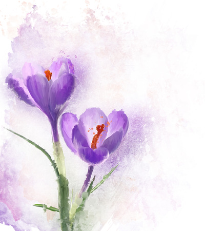 crocus: Digital Painting Of Crocus Flowers