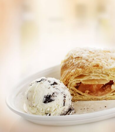 Apple Strudel with Ice Cream in a White Bowl photo