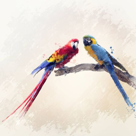 Digital Painting Of Two Macaw Parrots 스톡 콘텐츠