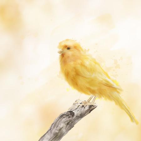 canary bird: Digital Painting of Yellow Bird