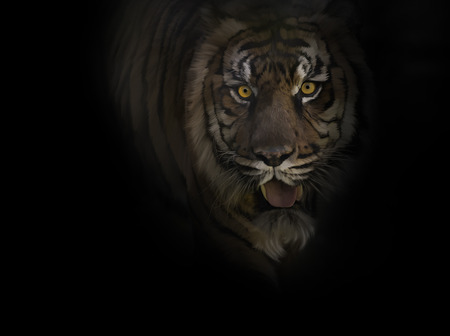 close: Digital Painting of Tiger ,Close Up Stock Photo