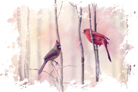 Digital Painting of  Northern Cardinals Perching on a Branch Stock fotó
