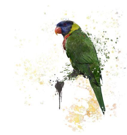 Digital Painting of  Rainbow Lorikeet