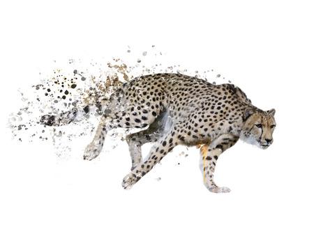 Het digitale Schilderen van Running Cheetah Stockfoto