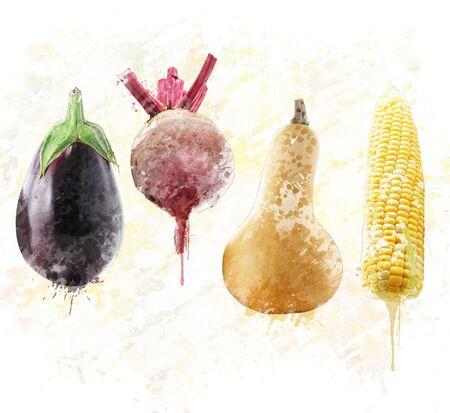 Het digitale schilderen van verse aubergine, bieten, pompoen en zoete maïs