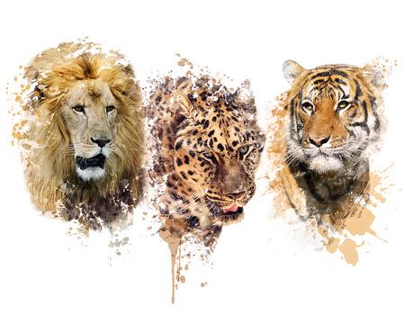 ライオン、ヒョウおよびトラの肖像画のデジタル絵画 写真素材