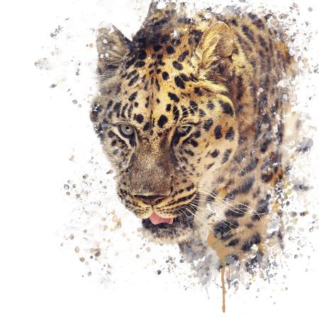 표범 무늬의 디지털 페인팅