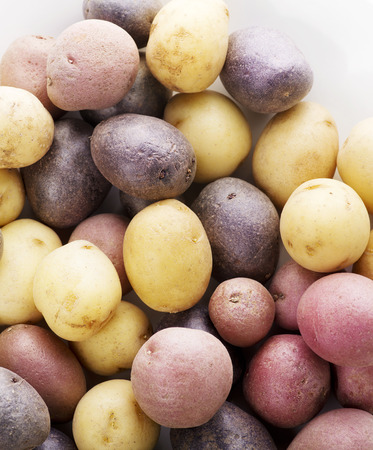 fingerling: Raw Fingerling potatoes ,close up for  background