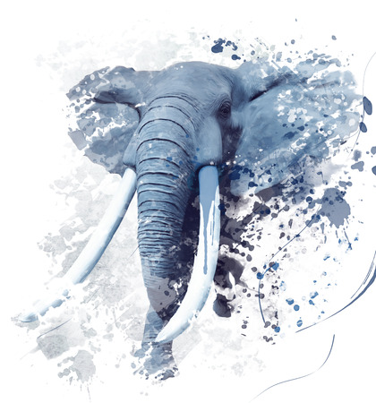 Digital Painting of  Elephant Portrait