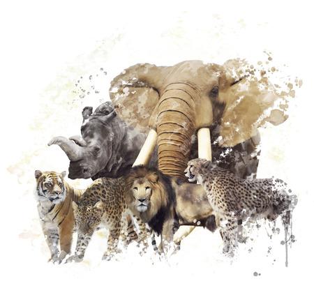 Digital Painting of  Wild Animals Reklamní fotografie - 72656263