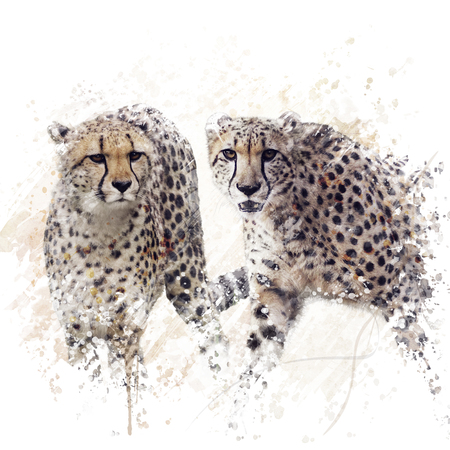 Digital Painting of  Two Cheetahs Portrait
