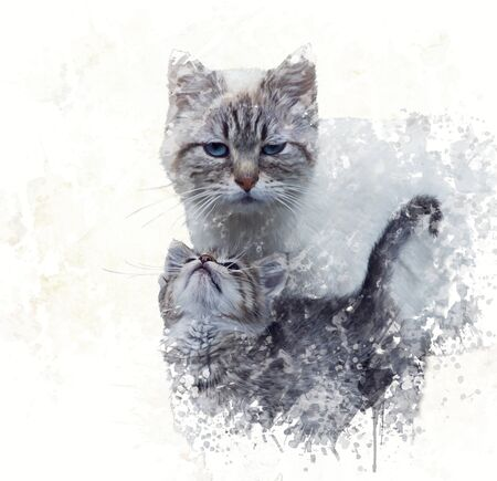 domestic cat: Digital Painting of  Mother Cat with its Kitten