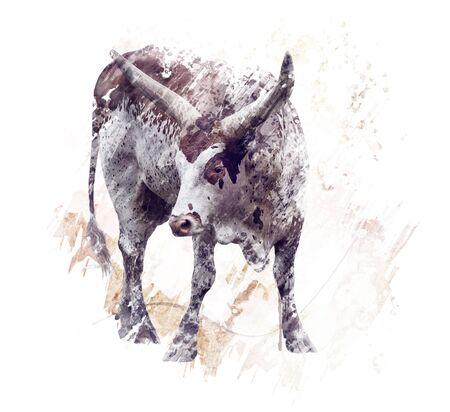 digital painting of  longhorn steer Stock fotó