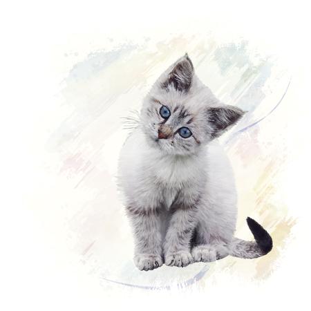 Digital Painting of White Kitten