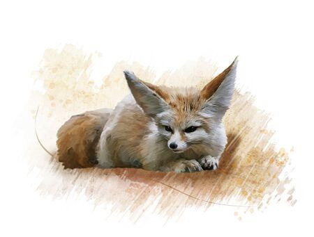 Digital Painting of Fennec Fox resting