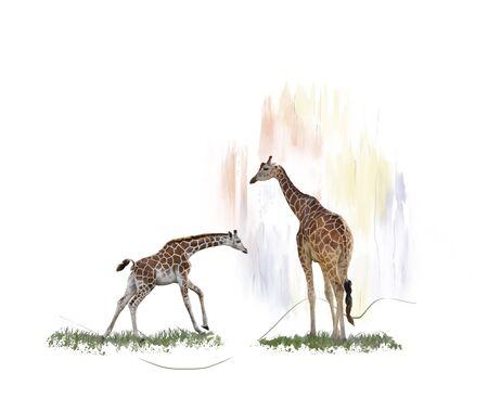 Digital Painting of  Two giraffes
