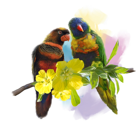 Digital Painting of Lorikeet Parrots