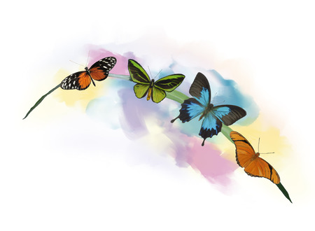 Digital Painting of Butterflies on the grass